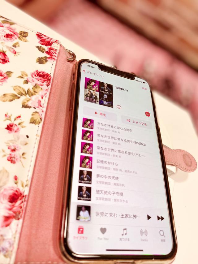 画像2: 【宝塚歌劇】今だからこそ聴きたい!宝塚ソング5選♡