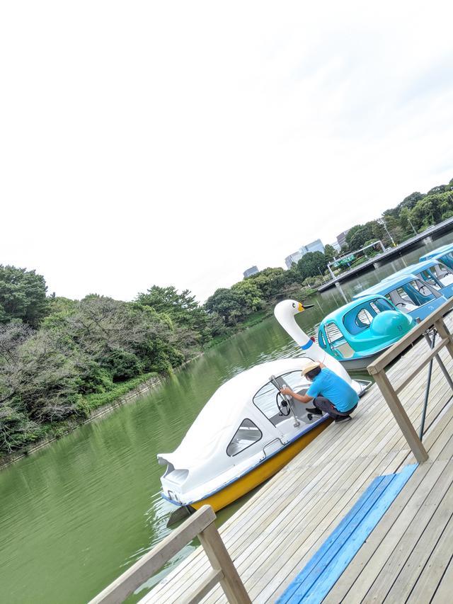 画像1: 千鳥ヶ淵でボート遊び