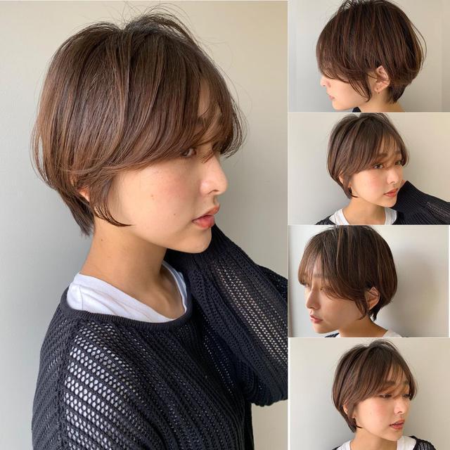 画像1: 出典:senken trend news