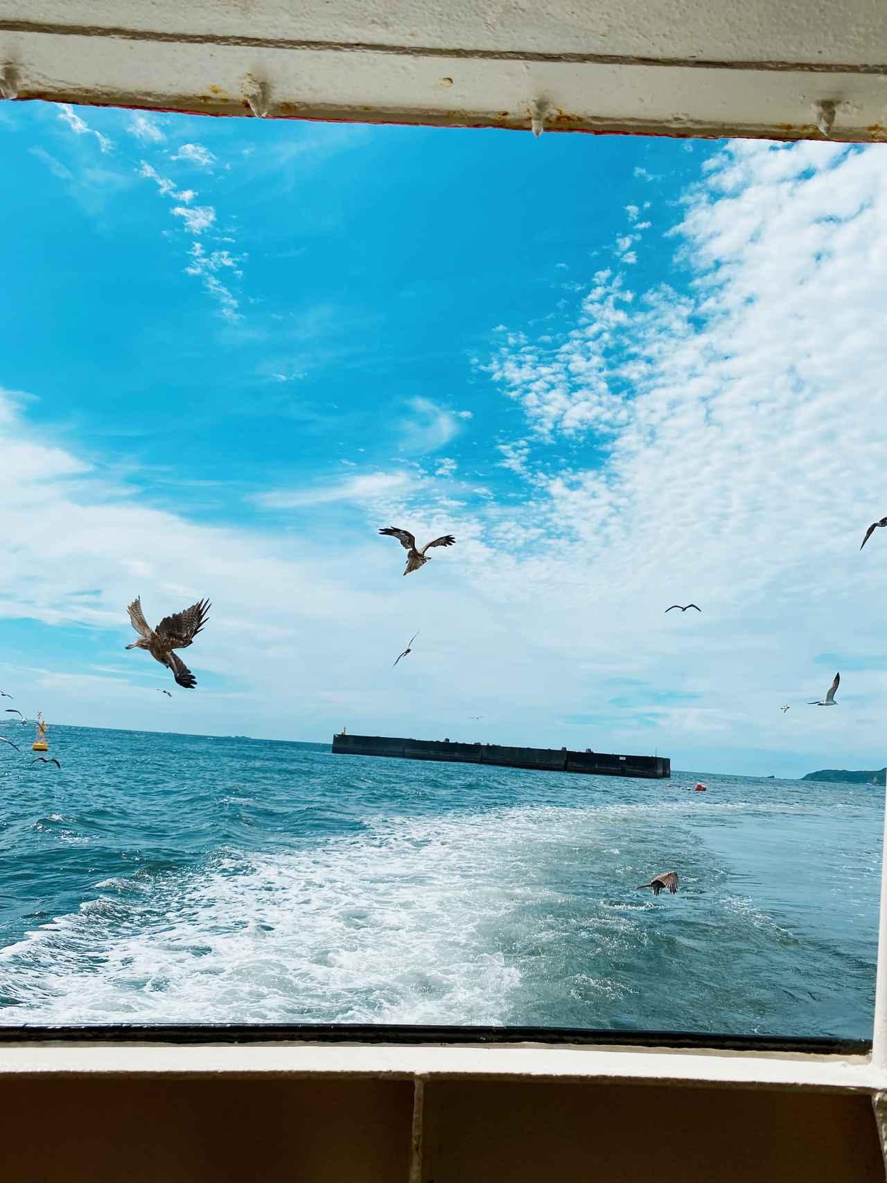 画像4: 黒船でタイムスリップ♡日本開国の舞台「下田港巡り」