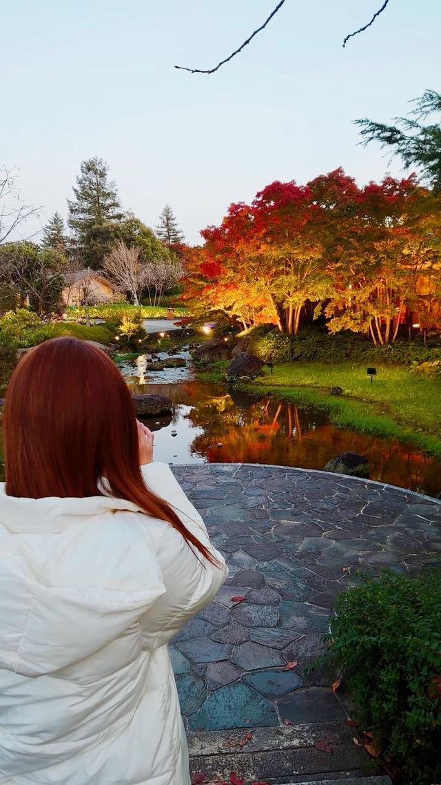 画像3: 全国紅葉名所ランクインの「なばなの里」美しさはいかに?!