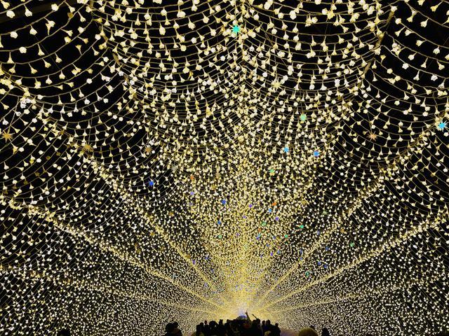 画像2: クリスマスデートにも最適♡なばなの里イルミ 2020