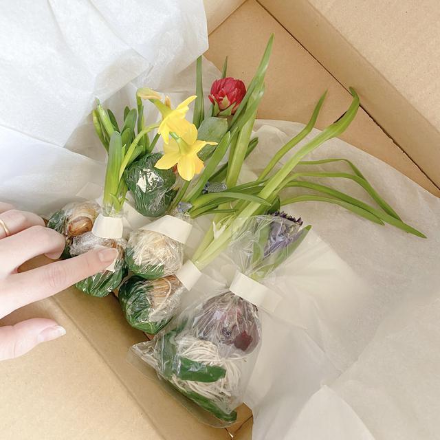 画像2: 季節のお花をオンラインで❤️