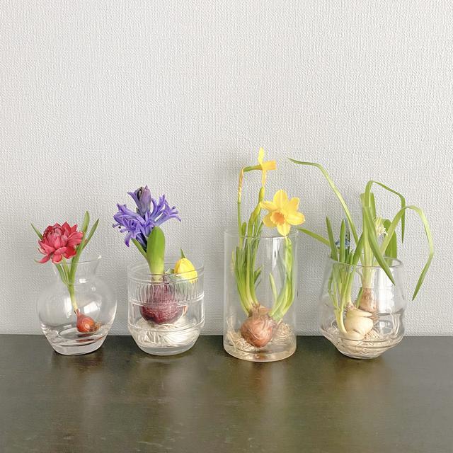 画像1: 季節のお花をオンラインで❤️