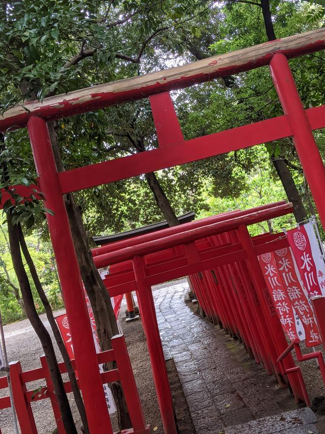 画像5: 大宮 氷川神社
