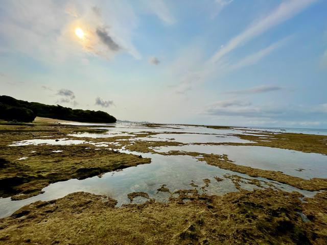 画像: 潮の満ち引きによって生まれます!