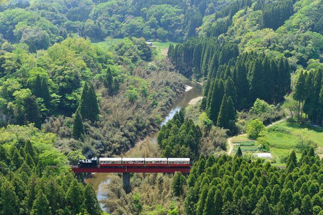 画像: トロッコ列車のご案内 | 小湊鐵道 房総里山トロッコ