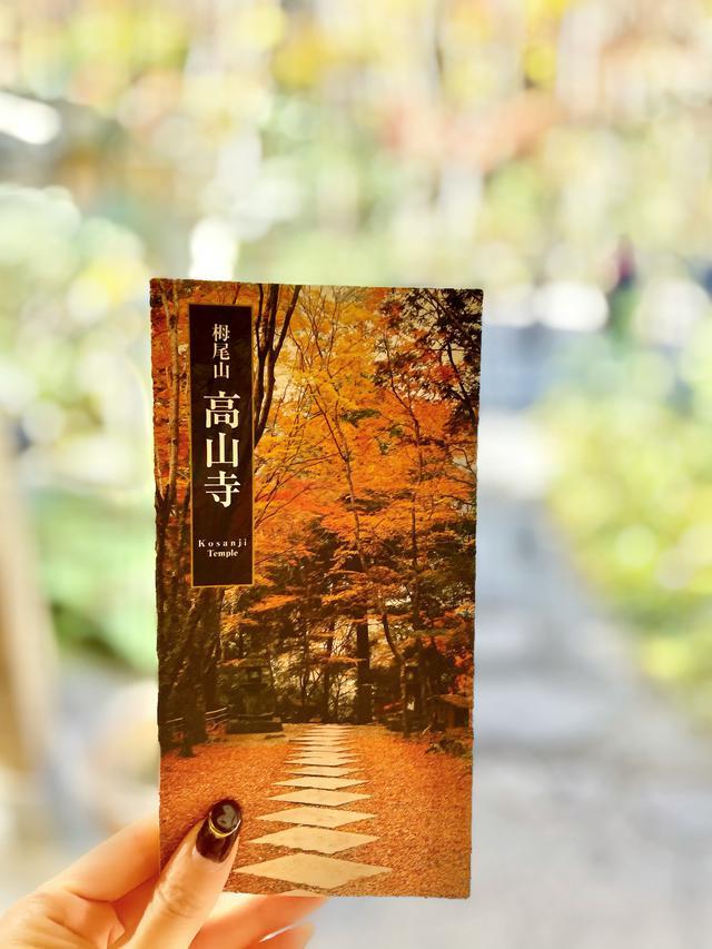 画像: 世界遺産!「高山寺」