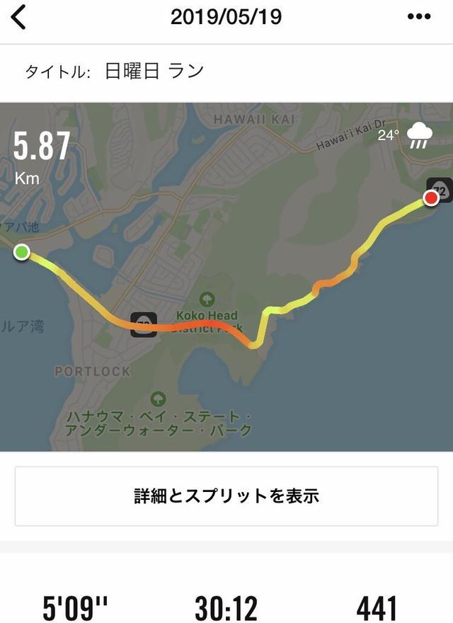 画像5: 「キン☆ボシ 憧れのハワイ陸路!supported by 美十」