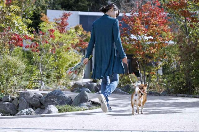 画像6: Short Story もう一つの散歩道 @北摂池田メモリアルパーク