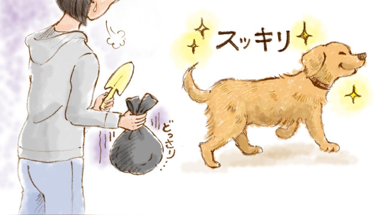 画像4: 「ゴールデンレトリバー編」おもいでワンコ手帖