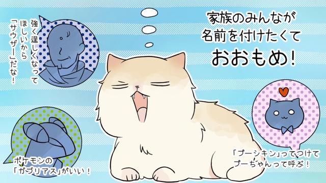 画像: 「プーがいた窓辺」平成にゃんこ物語 youtu.be