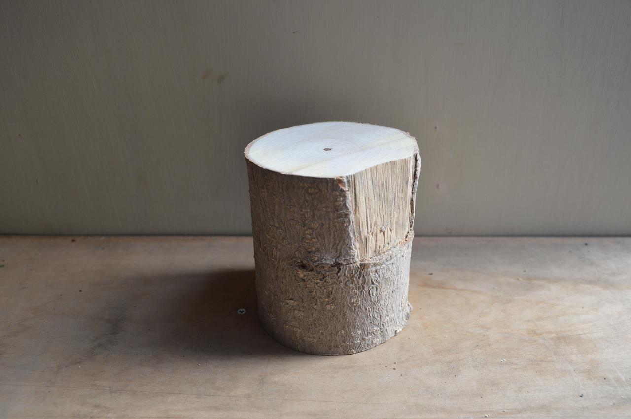 画像4: あの松の木 櫂 [KAI]のストーリー