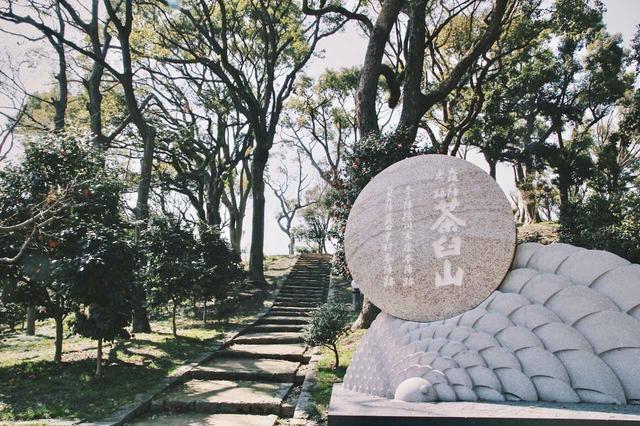 画像: 幸村公が陣を布いた茶臼山(天王寺公園)