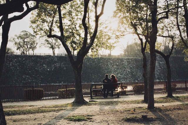 画像3: 大阪の陣の舞台・大阪城公園