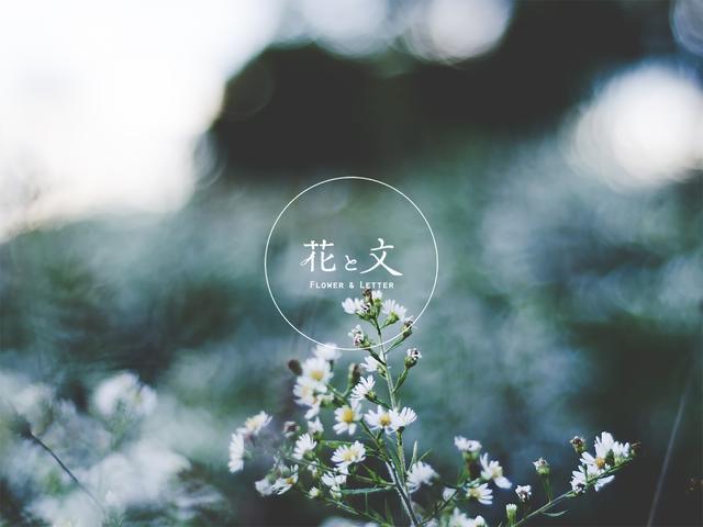 画像: 花と文