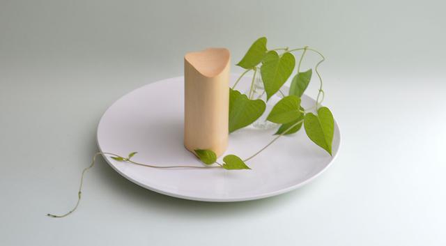画像: 柔らかな櫂の雰囲気が植物とよくあう。