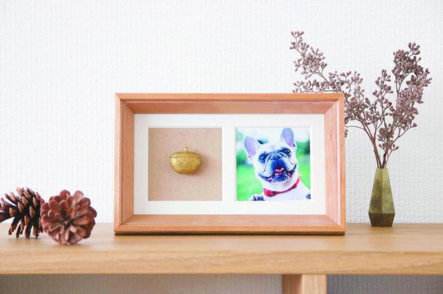 画像1: Recolle - ペットたちと過ごした日々は大切な宝物。お部屋に置けるミニ骨壷/株式会社神原