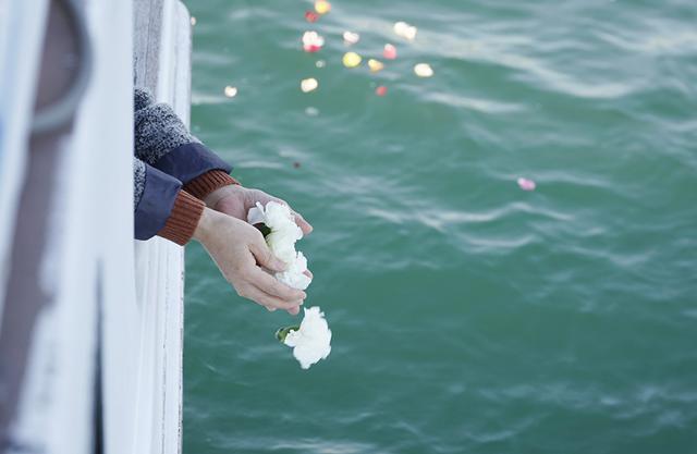 画像: 散骨後は花びらや花房を海へ。波に乗り、だんだん遠くへ伸びていく花びらの道筋が綺麗
