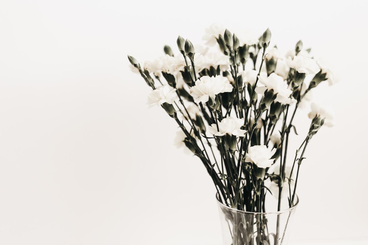 画像: お墓参りに持って行く花は何がいい? お供えする花の種類や選び方について