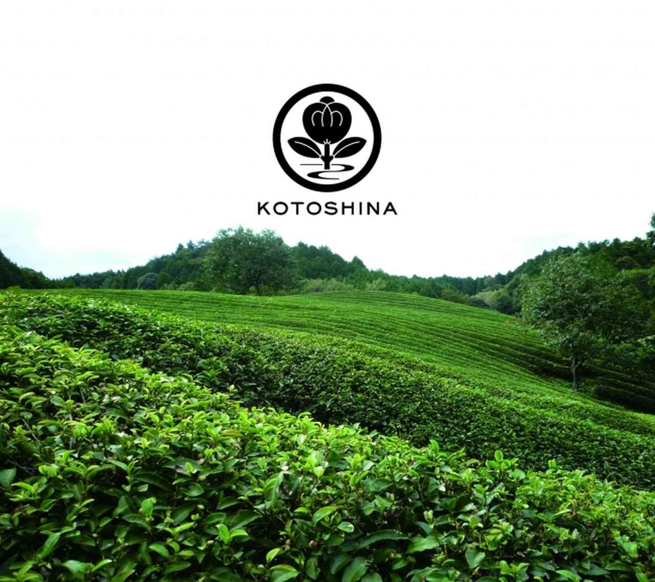 画像2: 京都発 オーガニックコスメブランド「コトシナ」からグリーンティー香るハンドソープ 新発売