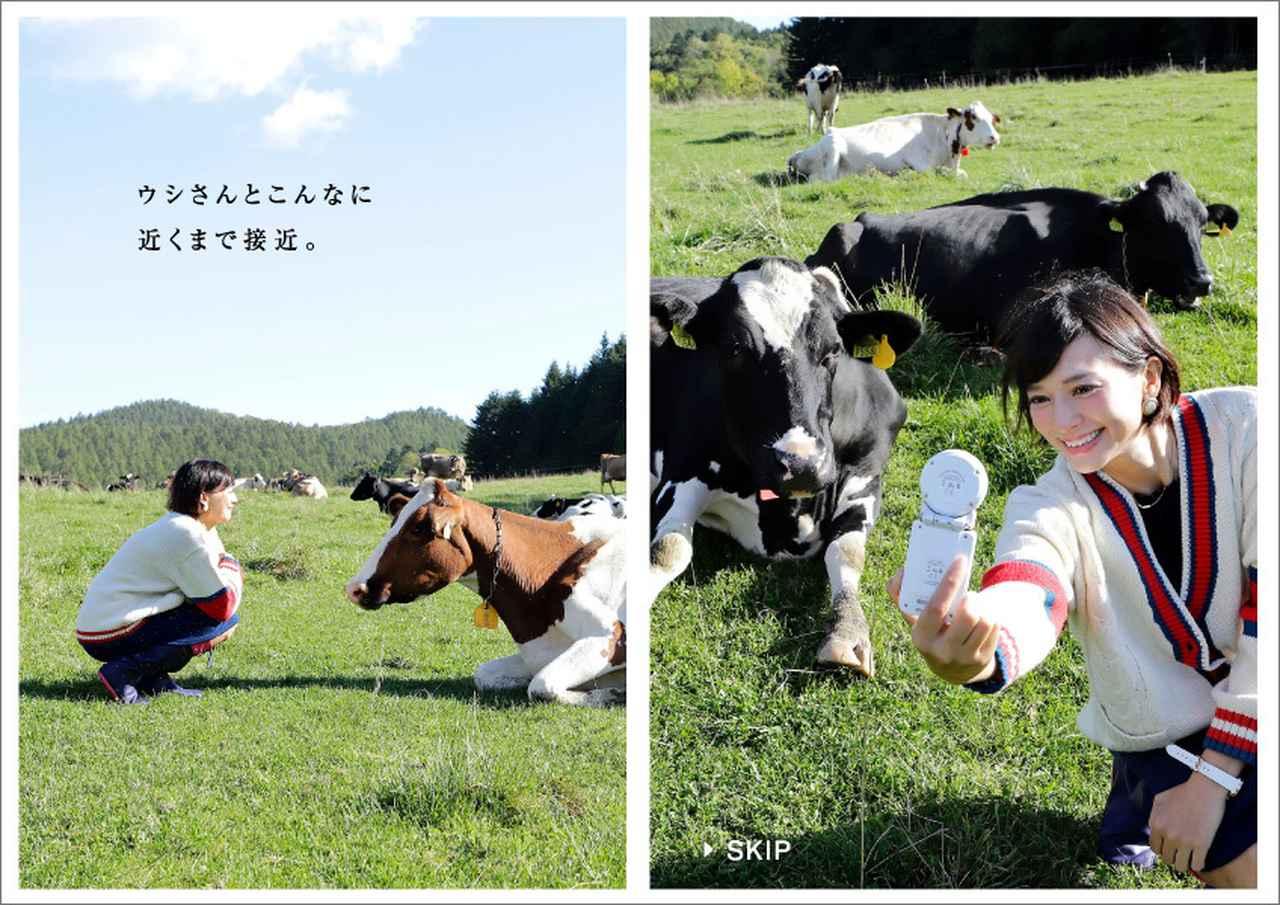 画像2: 北海道・西興部村×旅色アンバサダー 「旅色」タイアップ別冊も公開