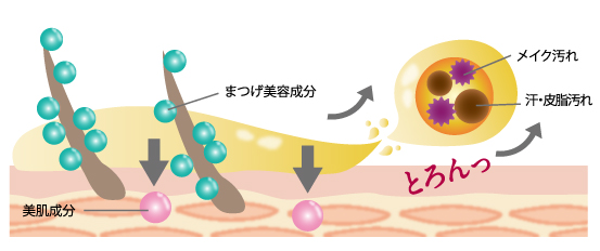 画像3: すごい根菜「安納芋」のクレンジング洗顔が誕生!