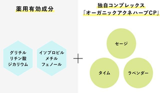 """画像2: """"春の花粉""""季節到来!早まる花粉散布で長期決戦…"""