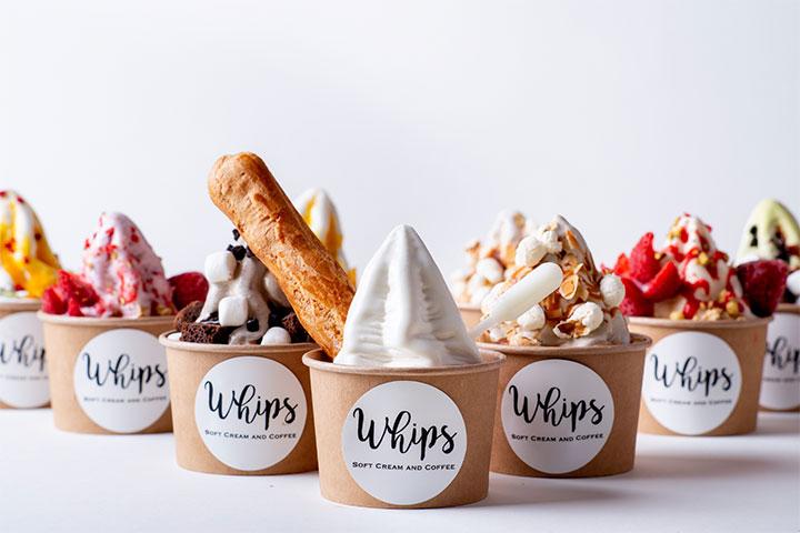 画像: Whips – Salt Group