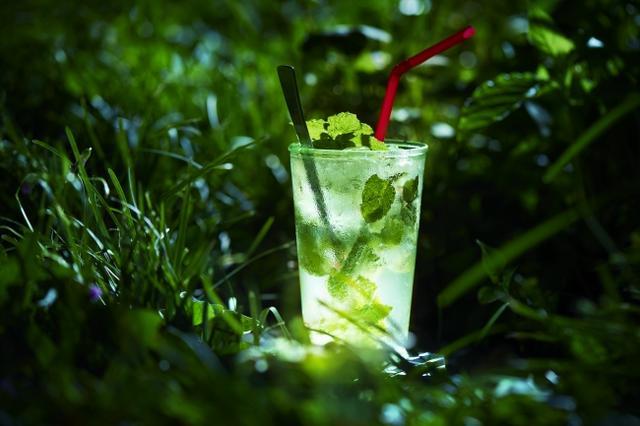 画像4: 花王「ニュービーズ」のボタニカルな香りを表現…光るハーバリウムを使った夏のイルミネーションを日比谷公園で初開催!『ビーズハーバリウム in ヒビヤアカリテラス2019』