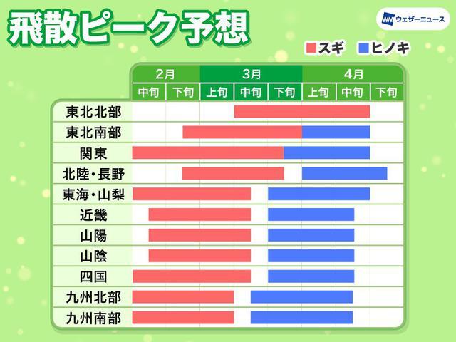 画像2: 関東は2月上旬から!いよいよツラ~い花粉シーズン到来