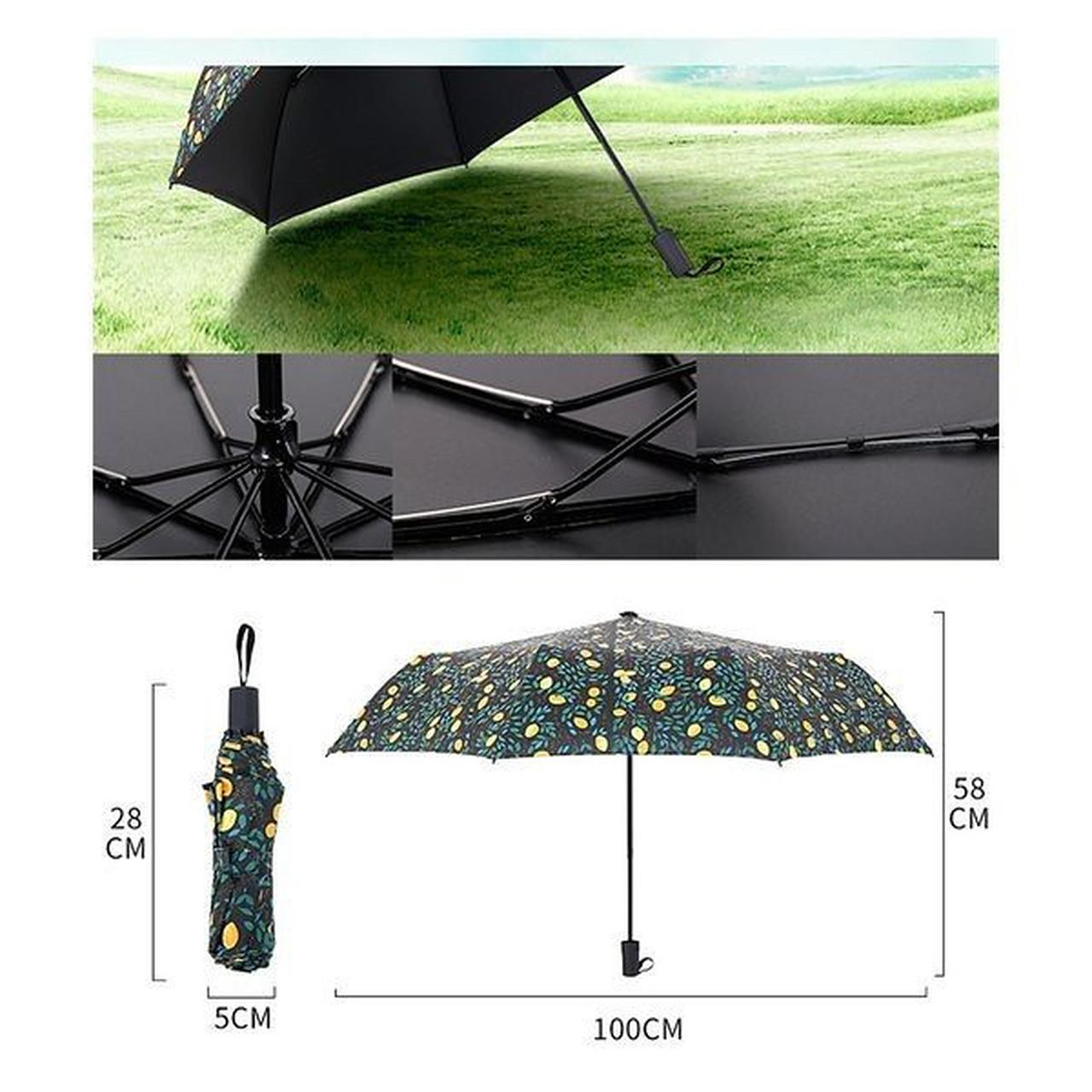 画像: 日傘/折りたたみ傘