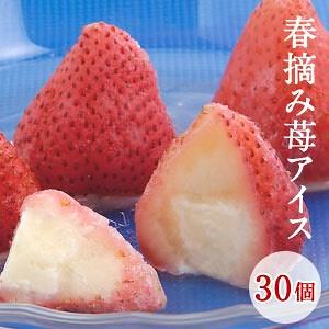 画像: [Qoo10] 春摘み苺アイス30個入り24個まで1配送... : 食品