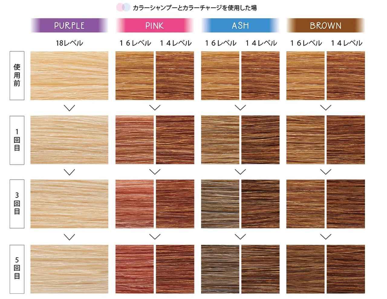 画像2: hoyu SOMARCA カラーシャンプー/カラーチャージ