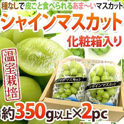 画像: [Qoo10] 温室シャインマスカット 秀品 約350g... : 食品