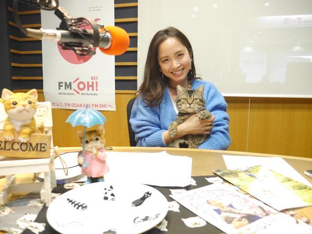 画像: 2/24放送のゲスト動物写真家「岩合光昭さん」