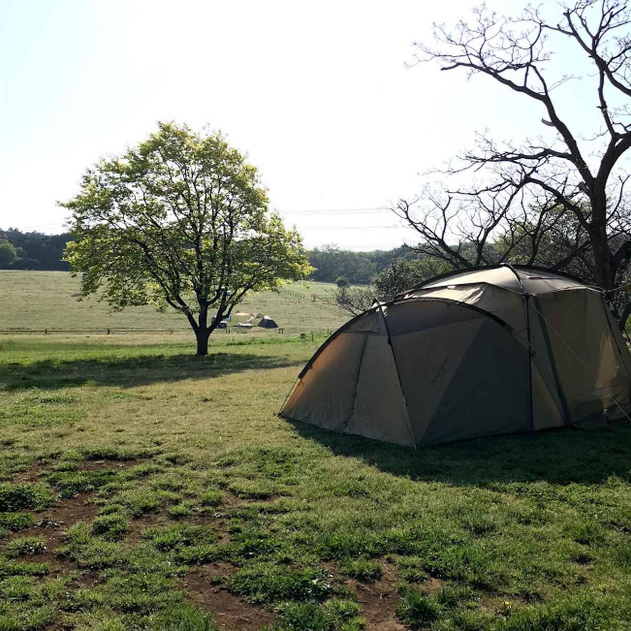 画像: ママキャンプブロガー サリーのキャンプスタイル