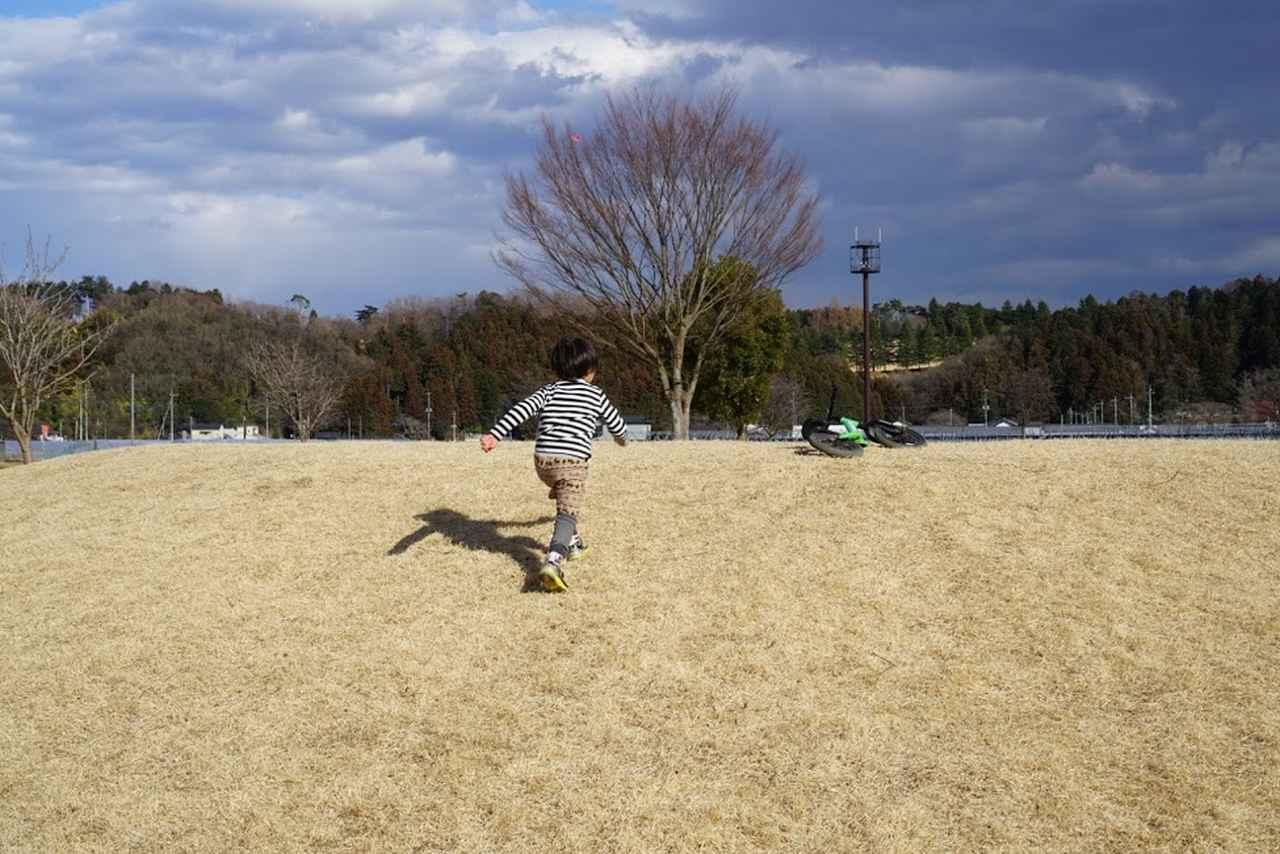 画像: キャンプ場で常に走り回っている4歳次男にも「生きる力」が付いているのかもしれない