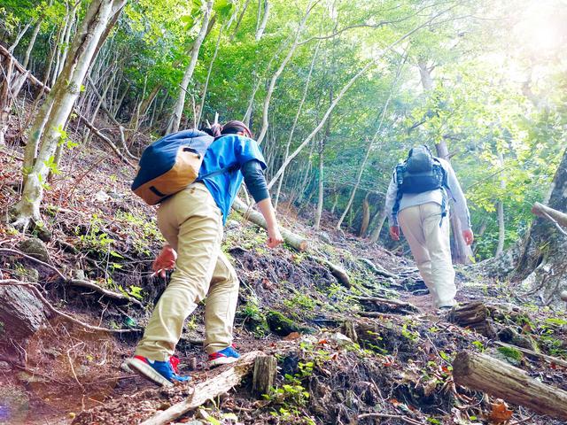 画像: 自分のレベルに合った山で、登山にチャレンジしてみよう!