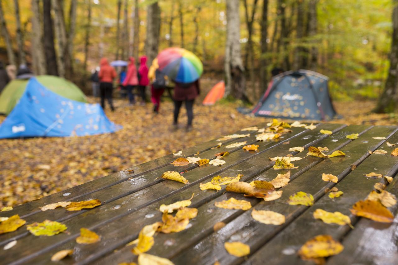 画像: 雨の日は子供たちの遊びが制限される テントやタープの設営を工夫して大人が遊びのエスコートしよう