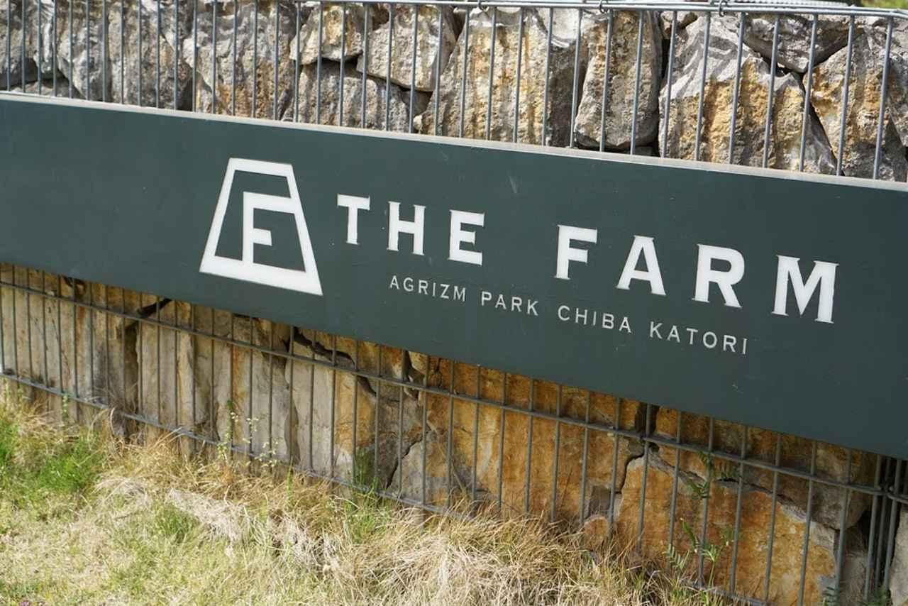 画像: THE FARM(ザファーム)とは? 千葉県香取市にある農園リゾート コテージやテントに宿泊可能!