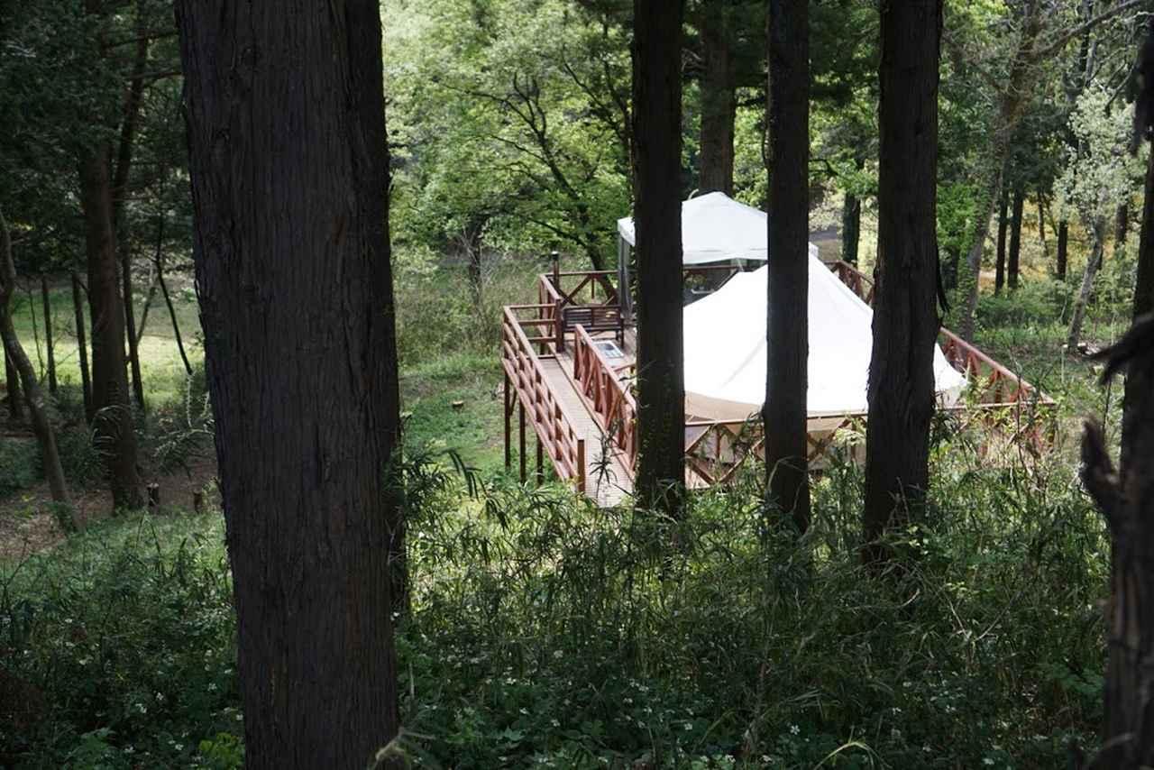 画像: 「フォレスト」には薪ストーブも完備されています。