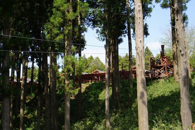 画像: 右側の木の台がスタート地点。けっこう高くてどきどきします。