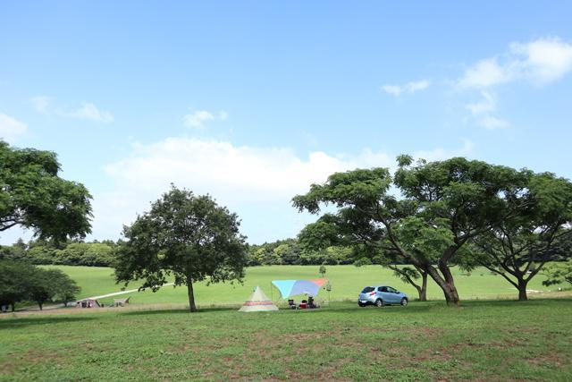 画像: 広いフリーサイトの通称「森まき」 futaricampguide.com
