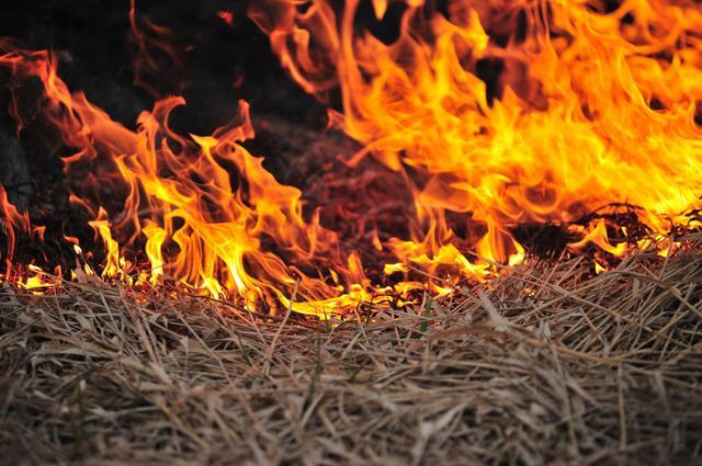 画像: 周囲に水源がない場所で焚き火する場合