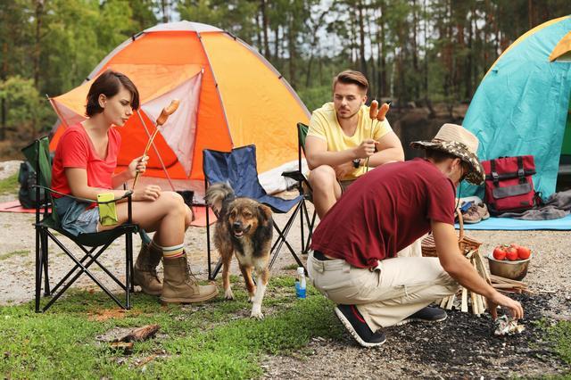 画像: 愛犬OKのキャンプ場でアウトドアを満喫しよう