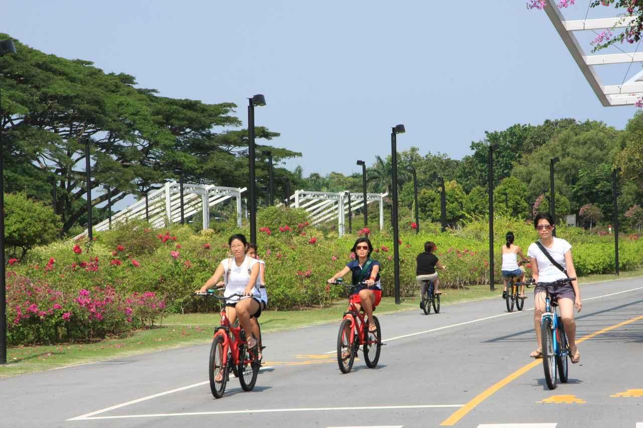 画像3: 引用元:www.nparks.gov.sg