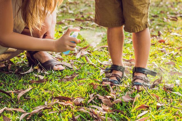画像: アウトドアやキャンプで虫除け対策 アロマの虫除けスプレーは香りも楽しめておすすめ