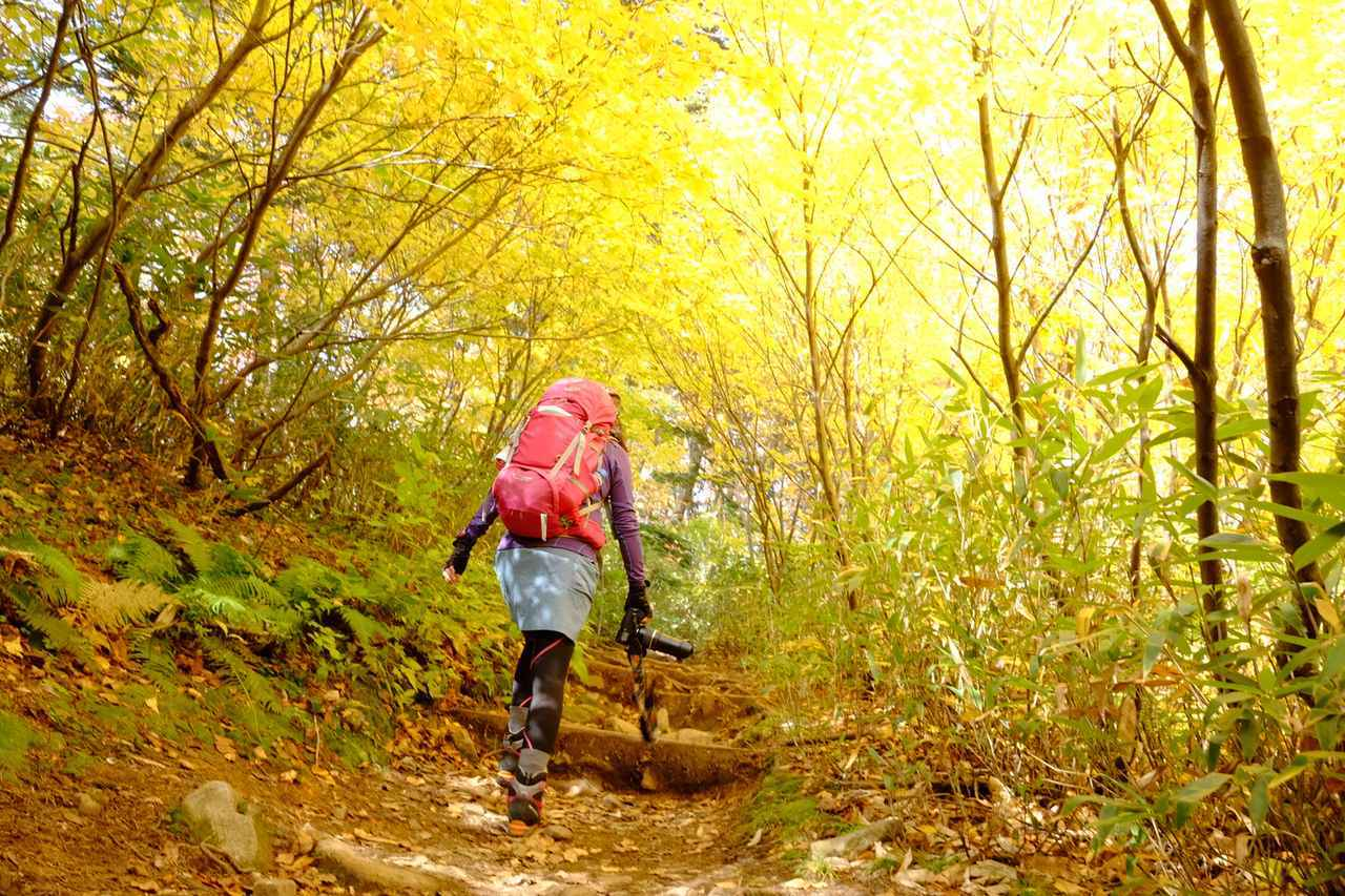 画像: 【関東】初めて登山を誰とする? 日帰り登山にぴったりの山をシチュエーション別にご紹介! - ハピキャン(HAPPY CAMPER)