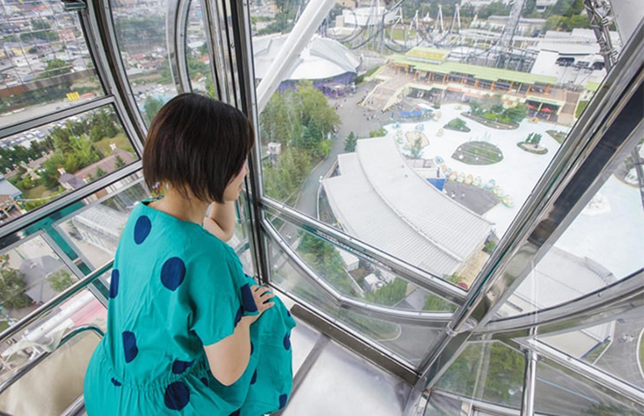 画像4: www.fujiq.jp